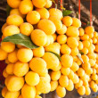 Maprang : tropical fruit in Thailand — Stok fotoğraf