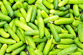 Pile of cucumbers at the local market. — Stock Photo