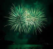 Bellos fuegos artificiales como palma de noche — Foto de Stock
