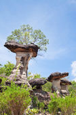 Mushroom stone and blue sky,The Natural Stone as Mushrooms in Ph — Stock Photo