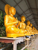 Row of golden Buddha in Thai art style at Thai temple,North East — Stock Photo