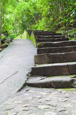 Walk way in Namtokphlio National Park,Chantaburi Province, ,Thai — Stock Photo