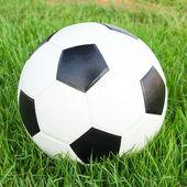 Fußball auf dem grünen gras — Stockfoto