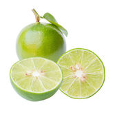 Citrus lime fruit — Stock fotografie