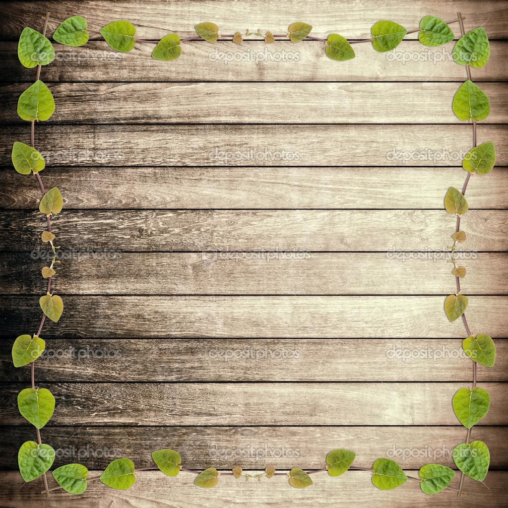 cadre plante verte plante grimpante sur planche de bois brut photographie satit srihin 44826387. Black Bedroom Furniture Sets. Home Design Ideas