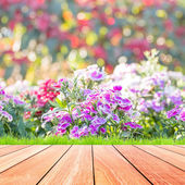 Beautiful flowers with colorful bokeh and wood floor — Photo