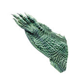Green leather hand crocodile isolated on white — Stock Photo