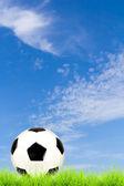 Soccer ball on green grass with blue sky background  — Zdjęcie stockowe