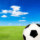 Soccer ball with green grass field against blue sky — Stock fotografie