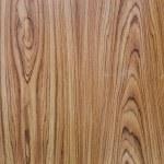 年輪との古いの木目テクスチャ背景 — ストック写真