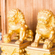 Chinese style figurine golden singha partner — Foto de Stock
