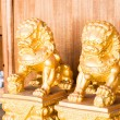 Stockfoto: Chinese style figurine golden singha partner