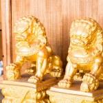 Китайский стиль фигурка Золотой Сингха партнера — Стоковое фото