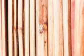 Beautiful nature bamboo partition — Stock Photo