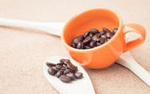 Coffee bean in ceramic cup and wood spoon — Stock Photo