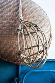 Wicker long handled fruit picker used in fruit orchards — Stock Photo