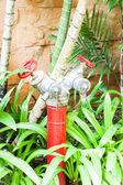Red metallic fire hydrant in green garden — Stock Photo