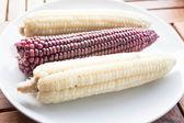 Vegetarian break with boiled corn cobs — Stock Photo