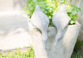 Twin ducks of plaster decorated in garden  — Foto Stock