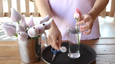 Woman Soak Dap Freshly Picked Pink Rose Flowers To Vase — Vídeo de stock