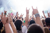 Concert Crowd — Stockfoto