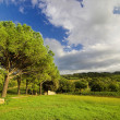 Landscape in italy - Stock Photo