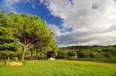 Landscape in italy — Stock Photo