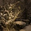 Snow covered christmas tree — Stockfoto