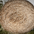 Stock Photo: Hay bale