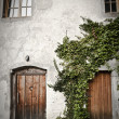 Old doors - Stock Photo