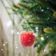 Christmas Composition with Red Apple — Stock Photo