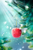 Christmas Card with Red Apple on the Branch — Stock Photo