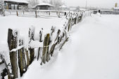 The Rural Fence Covered with Snow — Stock Photo