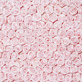 Wedding Background from Pink Roses — Stock Photo