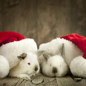 Christmas Card with Two White Rabbit under Caps — Stock Photo