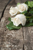 White Roses on the Wooden Table — 图库照片