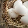 Fresh Eggs in the Wattled Basket Close Up — Stock Photo
