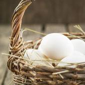 Fresh Chicken Eggs in the Wattled Basket — Stock Photo