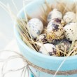 Quail Eggs in the Pot of Turquoise Colour — Stock Photo