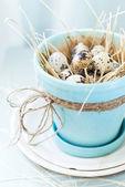 Jaja przepiórcze w garnku turkusowy kolor z przewodem — Zdjęcie stockowe