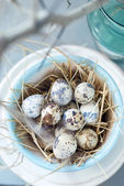 Small Quail Eggs in the Pot of Turquoise Colour — Stock Photo