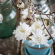 Composition with Quail Eggs and White Flowers  — Stock Photo