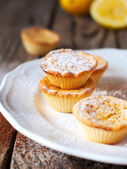 Tartlets decorated with powdered sugar on the white plate — Stock Photo