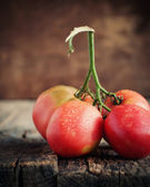 Tomatoes with drops — Stock Photo