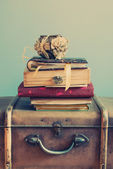 Vintage Albums on an Old Trunks, pastel color — Stock Photo