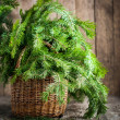 Branches of Fir in a Basket on wooden background — Stock Photo