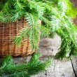 Green Branches of Fir in a Basket on wooden table — Stock Photo