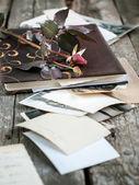 Photoalbum with rose — Stock Photo