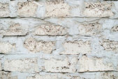 White Cinder Block Wall  — Stock Photo