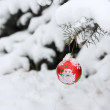 Christmas Tree Ball Decoration Outdoors - Stock Photo — Stock Photo